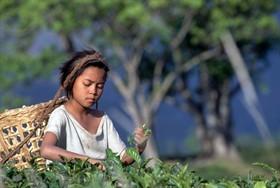 lavoro-minorile-asia_280x0