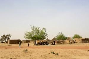 2. villaggio-niger